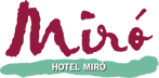 Hotel Juan Miro